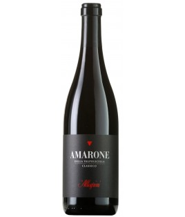 Amarone Classico 2011 - Allegrini